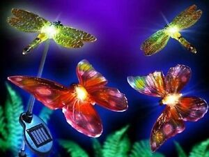 Image Is Loading GARDEN PATHWAY SOLAR LIGHTS 2 DRAGONFLY 2 BUTTERFLY