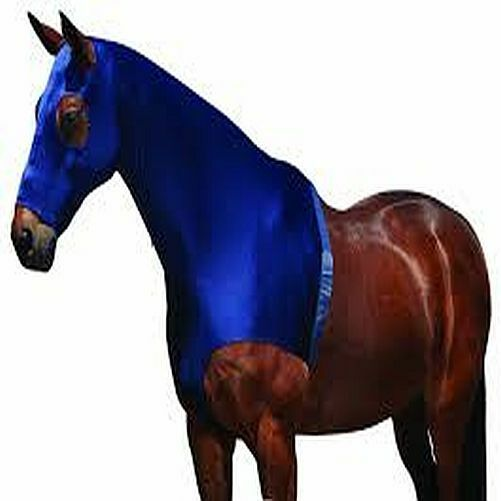 New Horse Cob Pony Weatherbeeta Stretch Hood with Zip - Prevent rugs rubbing