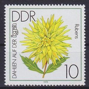 DDR-Mi-Nr-2435-F-19-PF-Bluetenumrandung-gebrochen-Plattenfehler-MNH
