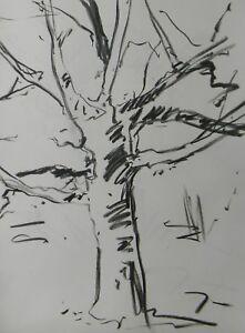 JOSE TRUJILLO - MODERN Contemporary ORIGINAL CHARCOAL DRAWING Dried Tree Trunk