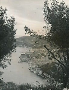 VILLEFRANCHE c. 1935 - La Rade Le Port La Ville Alpes-Maritimes - DIV8681 SYOOaj30-09152608-716407139