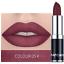 12-colores-impermeable-de-larga-duracion-Lapiz-labial-mate-maquillaje-cosmetico-brillo-labial miniatura 14