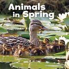 Animals in Spring by Kathryn Clay, Mira Vonne (Hardback, 2016)