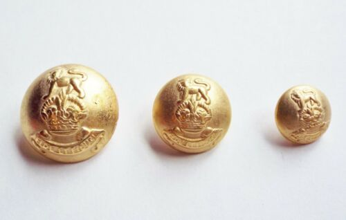 HERALDRY  BLAZER COAT BUTTONS 25 20 or 15mm 6 METAL GOLD TONE COAT OF ARMS