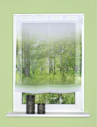 Digitaldruck Schlaufen Raffrollo 45//60//80//100//120x140 Newcastle grün Wald Rollo