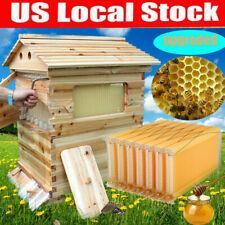 7 Pcs Flowing Honey Beehive Frames Bee Hive Beekeeping Brood Cedarwood Box Set