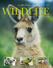 Australian Wildlife A Souvenir Of by Steve Parish (Paperback, 2003)