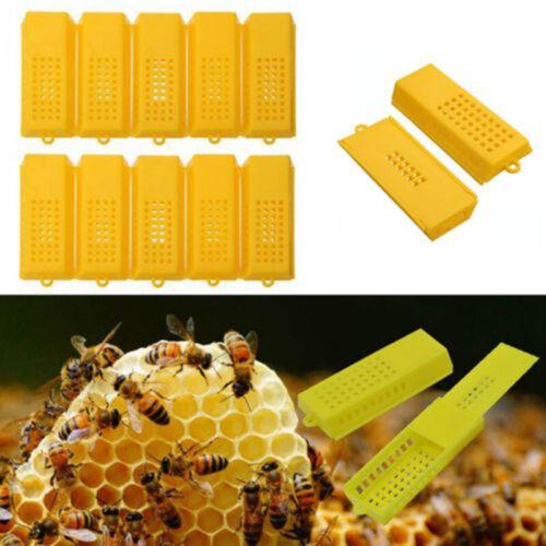10pcs Extended Queen//Bee Butler Cage Catcher Trap Case Plastic Beekeeping Tools