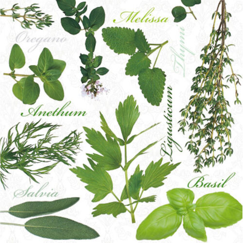 "Basil Melisa Paper Luncheon Napkins 2 x 20pcs 13/""x13/"" Kitchen Herbs Thyme"