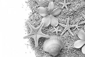 Cuarto De Baño Playa-Negro y Blanco Hogar Decoración Pared Arte Cartel Y Lona Fotos
