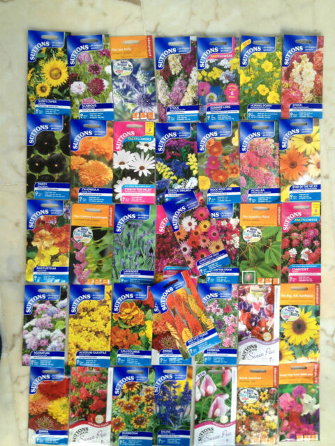 CHEAPEST JOB LOT OF MIXED FLOWER AND VEG SUTTON SEEDS PERFECT  10 PACKETS FOR £5