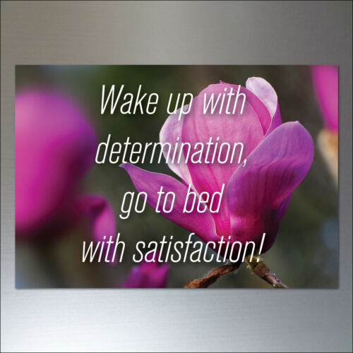 Motivational Fridge Magnets and inspirational quotes Set 0f 8  No.3