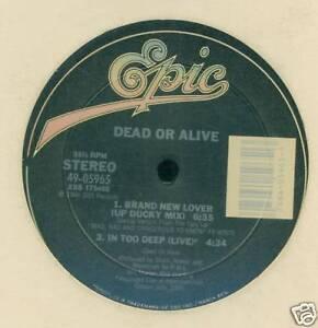 DEAD OR ALIVE 45 JAPAN BRAND NEW LOVER JAPAN 1 SIDED 45 | eBay