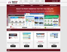 Established Website Selling Business Script