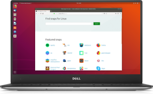 ubuntu  linux 18.10 /& 18.04.2 DVDs /& 16GB USB Desktop or Server Edition 64 Bit