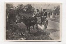 PHOTO ANCIENNE - Voiture à cheval Attelage Couple Chapeau Âne Vers 1930