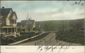 Callicoon-NY-High-View-Terrace-c1910-Postcard