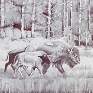 Limited Edition Native American Print by Navajo artist Frankie C. Nez