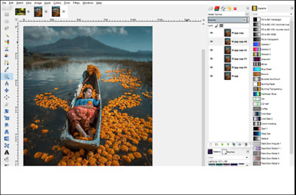 Image Editing Editor Photo Photograph Pro Professional 2