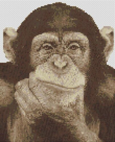 Animals Monkeys Wildlife Chimpanzee Counted Cross Stitch Kit