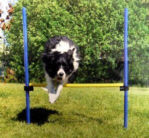 Original-Drybed-Agility-Spass-Sport-Huerde-Tasche-Hundespiel-Hundetraining