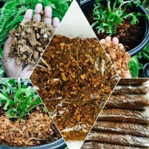 Coconut Husk Fiber/Chips For Orchids Flowers And Other Plants 100% Natural 400g