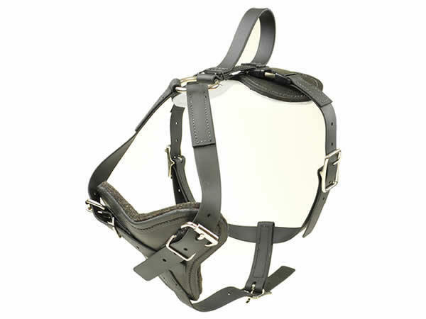 Biothane All Weather Dog Harness With Quick Release Redline K9 Large