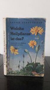 Bruno-Schoene-Welche-Heilpflanze-Ist-das-1914