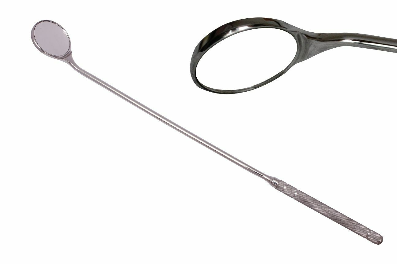 Equine Dentistry EDT Mirror Horse Dental Veterinary Examination Mirror EDT Dentistry Tools 12dd76
