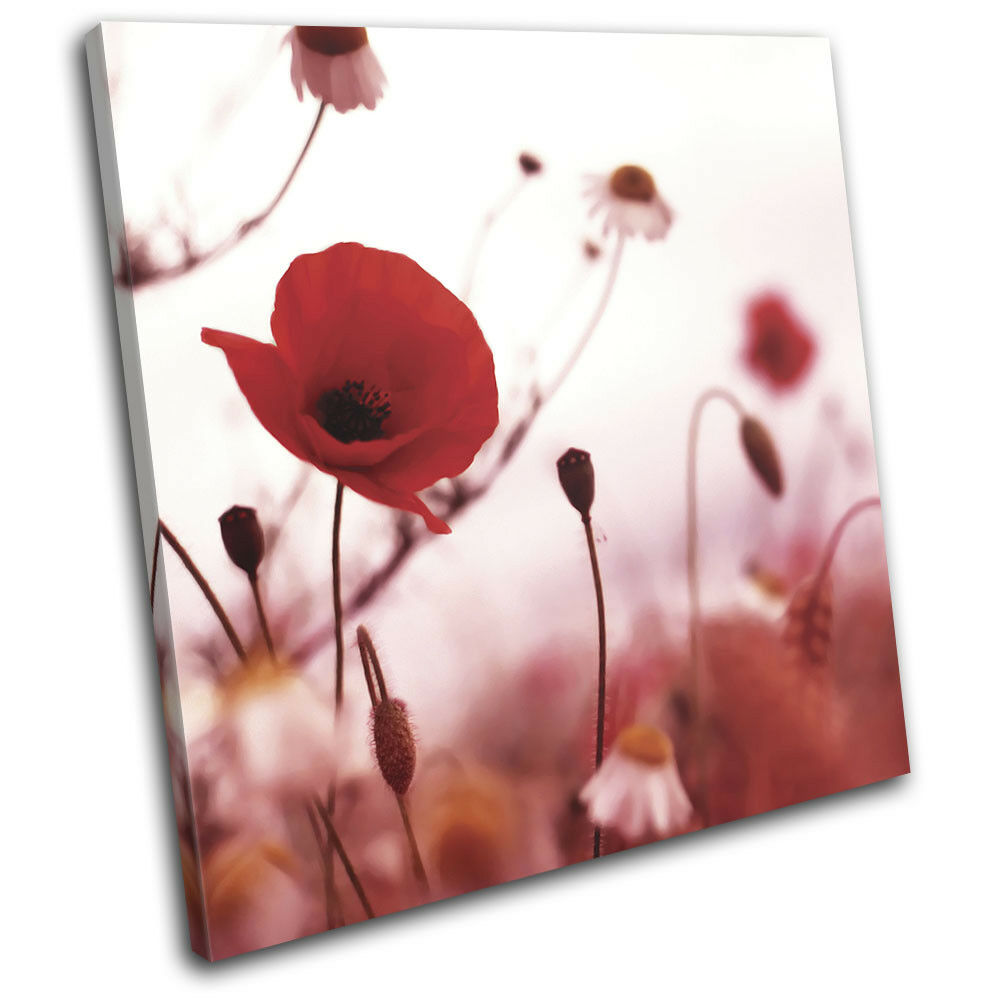 rosso Poppies Flowers Poppy Modern Floral SINGLE TELA parete arte foto stampa