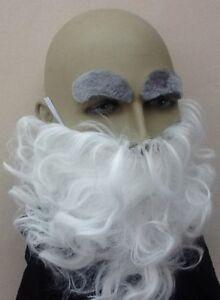 BARBA-bianca-RICCI-amp-Grigio-Per-Sopracciglia-Set-Costume-ACC-procedura-guidata-Gnome-UK-Venditore
