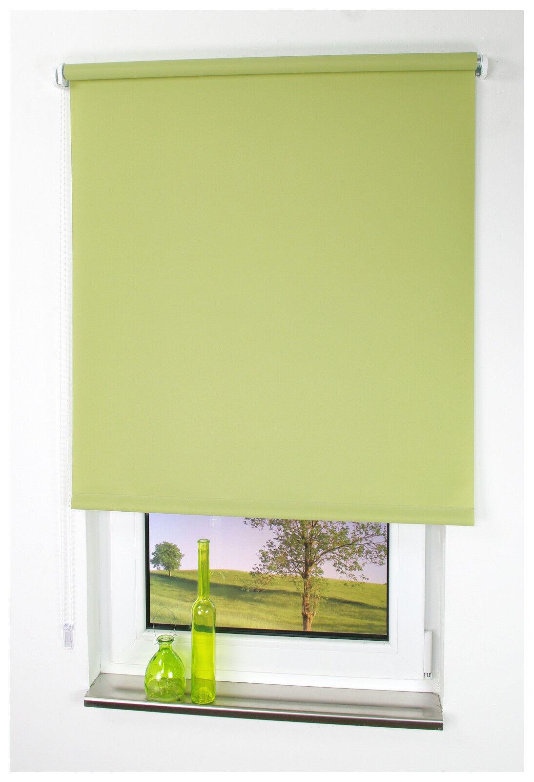 Kettenzugrollo Blattgrün Seitenzugrollo Tür Fensterrollo Sichtschutz Dekoration