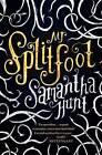 Mr Splitfoot by Samantha Hunt (Hardback, 2016)