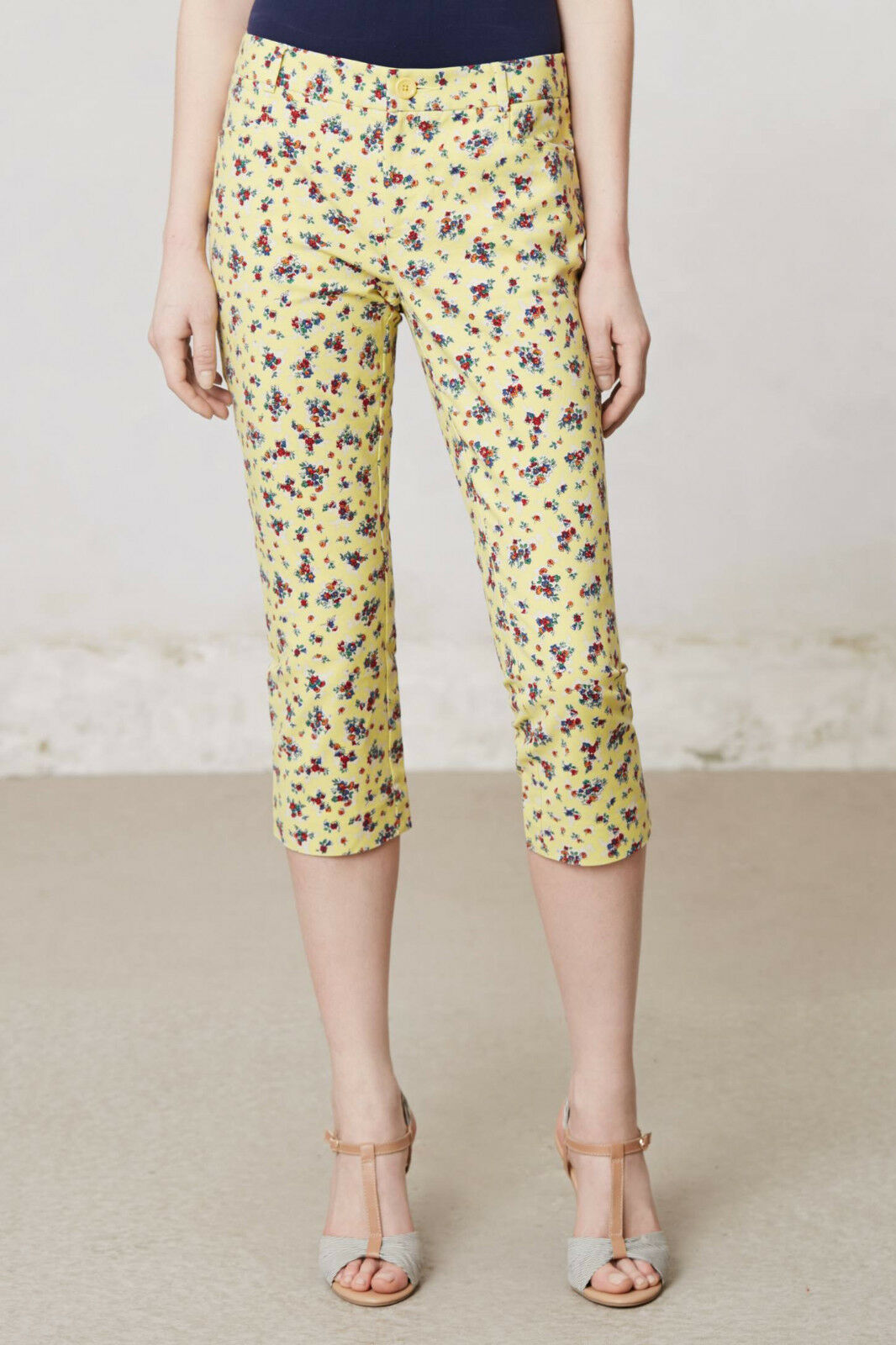 Cartonnier Retro Flora Charlie Crops Pants Size 2,4,8,10,12 NW ANTHROPOLOGIE Tag