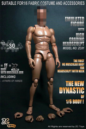 12In ZCTOYS Wide Shoulder Muscular Man Action Figure Body Model Toys F 1:6 Head