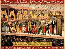 ART PRINT POSTER ADVERT CULTURE EVENT FREAK SHOW BARNUM BAILEY NOFL1597