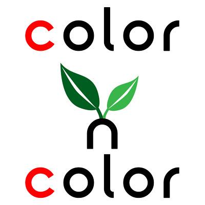 Color N Color Store