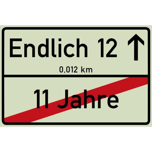 Endlich 12 Jahre Ortsschild 12 Geburtstag Schild in 12 Farben 300 x 200 x 3 mm