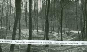 Zirndorf : Die Brunnenschlucht am Norhang der alten Veste-  um 1930       W 9-18