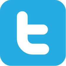 "Twitter Logo 8"" x  8"""