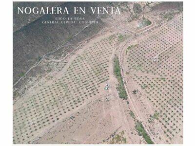 Rancho en Venta General Cepeda