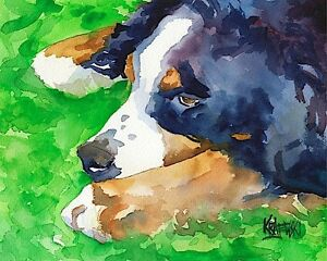 Bernese-Mountain-Dog-11x14-signed-art-PRINT-painting