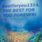 bestforyou1314