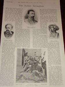 Art Aggressive 1899 Boer War Italian Bersaglieri Lamarmora Tarditi Etc Cheap Sales