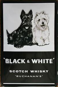 NERO-amp-Bianco-Scotch-Whisky-Targa-di-latta-NUOVO