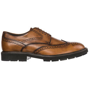 TOD-039-S-MEN-039-S-CLASSIC-LEATHER-LACE-UP-LACED-FORMAL-SHOES-NEW-BROGUE-BROWN-B29