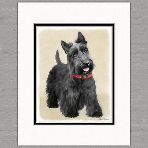 Scottish-Terrier-Scottie-Dog-Original-Art-Print-8x10-Matted-to-11x14