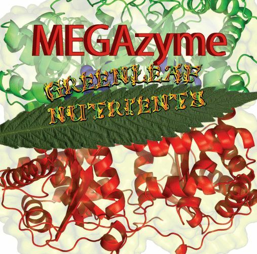 MEGAzyme Hydroponic Nutrient advanced cannazym hygrozyme sensizym