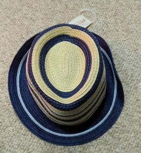 5ecfc0514 Details about Target Cat & Jack Boys Hat Fedora straw type blue and tan.  Size 2T-5T WHLM1814