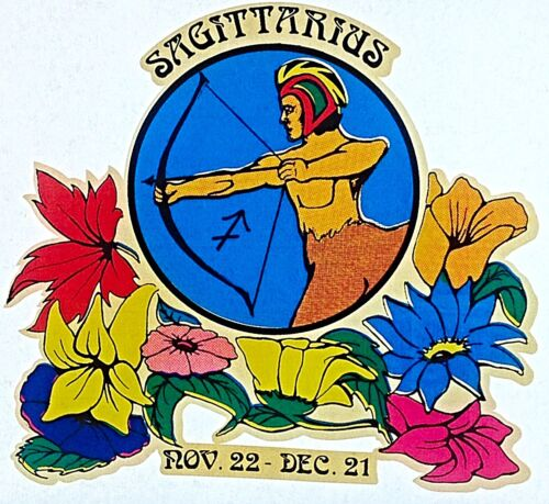 Original Vintage 70s Sagittarius Iron On Transfer Horoscope Floral